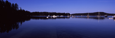 Reflection of Trees in Water, Acadia National Park, Mount Desert Island, Hancock County, Maine, USA Wall Decal by  Panoramic Images