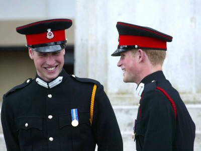 prince william and prince harry. Prince William and Prince