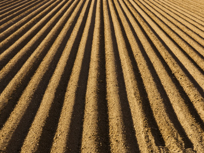 Ploughed Field Photographic Print by Douglas Steakley