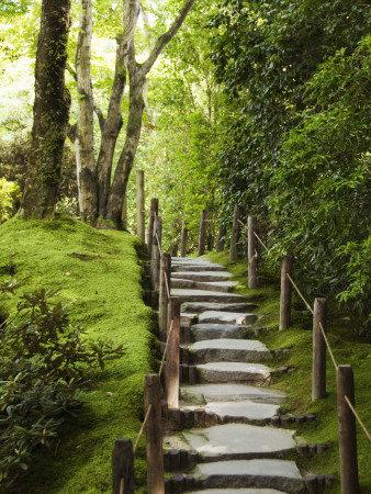 Stone Steps Leading Through Shoyoen Garden at Rinno-Ji Temple Fotografická reprodukce