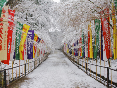 Colourful Japanese Style Flags Along Walkway Leading to Daigoji Temple Complex after Snowfall Photographic Print by Frank Carter