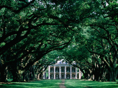 Oak Alley Plantation in Mississippi River Valley Photographic Print by John Elk III