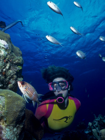 Diver Looking at Squirrelfish (Holocentrus Adscensionis) on Voral Head Photographic Print by Michael Lawrence