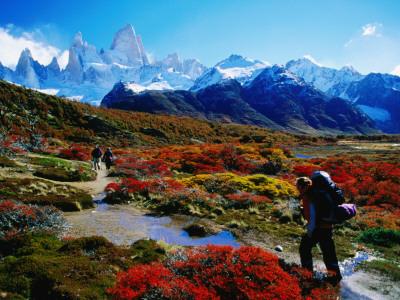 Trekkers Walking Through Autumnal Foliage Towards Monte Fitz Roy Photographic Print by Gareth McCormack