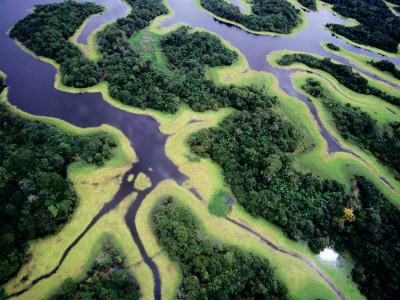 Overhead of Rio Negro Photographic Print by Diego Lezama