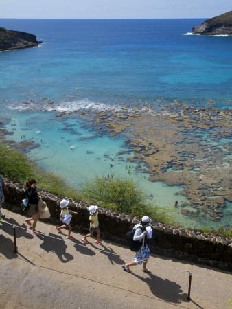 Family Heading to Coral Reef at Hanauma Bay Photographic Print by Sabrina Dalbesio