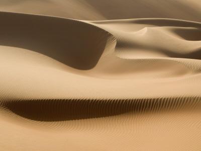 Sand Dunes, Rub Al Khali Desert Photographic Print by Aldo Pavan