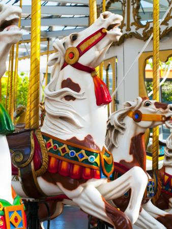 Carousel Horses at Yerba Buena Center for the Arts Photographic Print by Sabrina Dalbesio