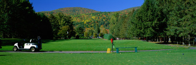 Golf Course, Fairlee, VT Wall Decal by  Panoramic Images