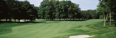 Trees in a Golf Course, Whirlpool Golf Course, Niagara Falls, Ontario Wall Decal by  Panoramic Images