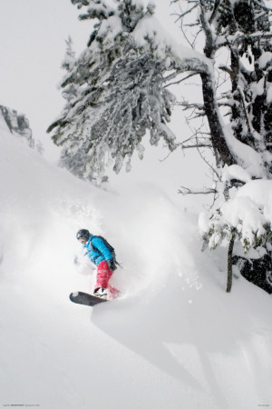 Snowboarder-Under Tree Posters