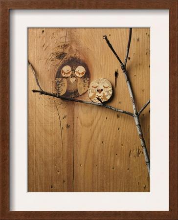 Wood Owl Knots Prints