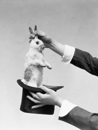 Hands of Magician Performing Magic Trick, Pulling Rabbit Out of Top Hat Fotografisk tryk