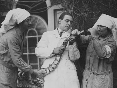 Snake Ache Photographic Print