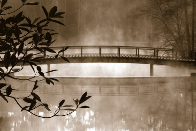 Callaway Garden Pond Posters by Danita Delimont