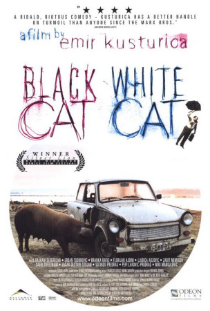 Black Cat, White Cat Posters