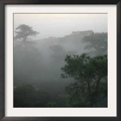 Canyon Mist III Poster by Nicole Katano