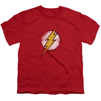 Youth: Justice League America - Destroyed Flash Logo T-Shirt