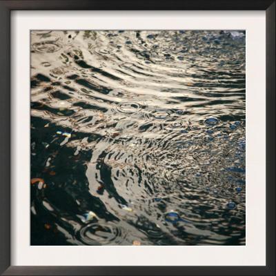 Water Drops IV Prints by Nicole Katano