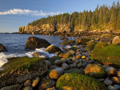 Polished Rocks at Otter Cliffs, Acadia National Park, Maine, USA Fotografie-Druck von Chuck Haney