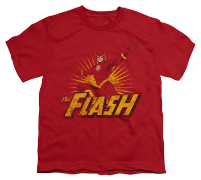 Youth: Justice League America - Flash Rough Distress Shirts
