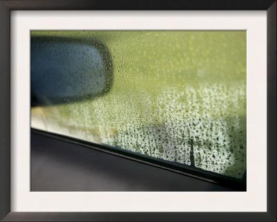 Rain Reflections I Print by Nicole Katano