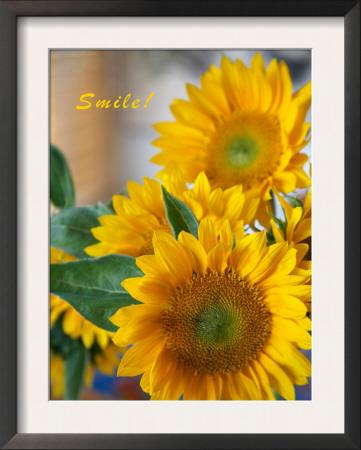 Smile: Sunny Sunflower Art by Nicole Katano