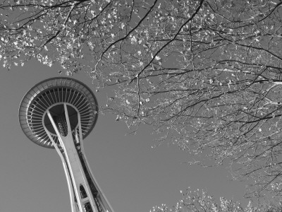 Space Needle, Seattle, Washington, USA Photographic Print by Savanah Stewart