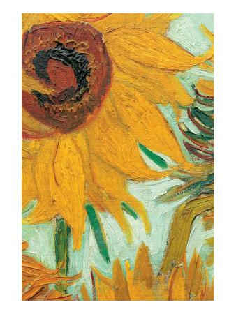 Twelve Sunflowers (detail) Premium Giclee Print by Vincent van Gogh