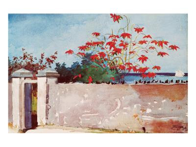 Wall, Nassau, c.1898 Premium Giclee Print by Winslow Homer