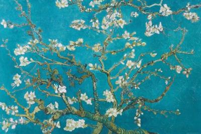 Amandelbloesem, San Remy,1890 Poster van Vincent van Gogh