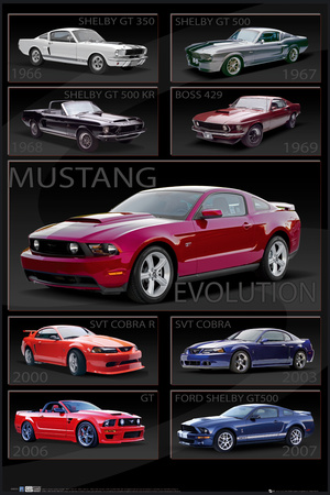 Ford Shelby - Mustang Evolution Póster