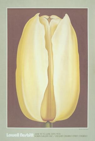 Yellow Tulip Print by Lowell Nesbitt