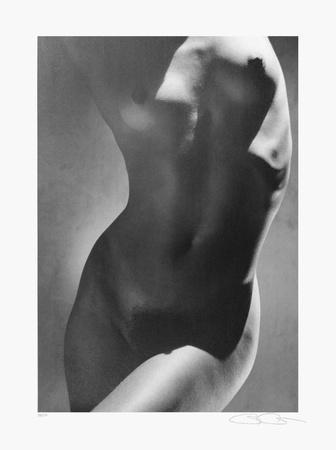 Weiblicher Torso Collectable Print by Greg Gorman