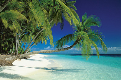 Maldives Beach Poster