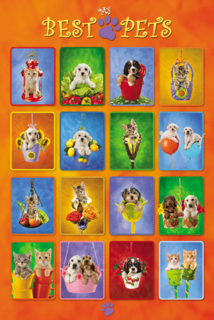 My Best Pets - Collage Poster