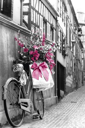Flores cor-de-rosa Pôster