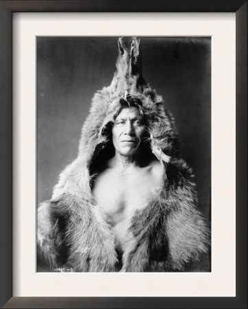 arikara-indian-wearing-bear-skin-edward-curtis-photograph.jpg