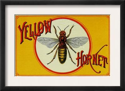 Yellow Hornet Brand Cigar Box Label Prints