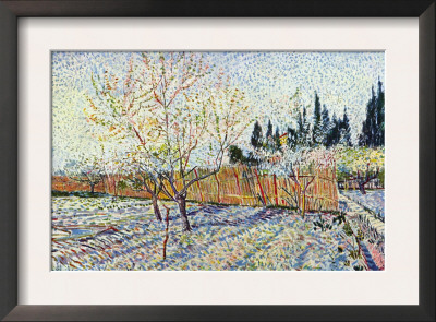 Orchard Print by Vincent van Gogh