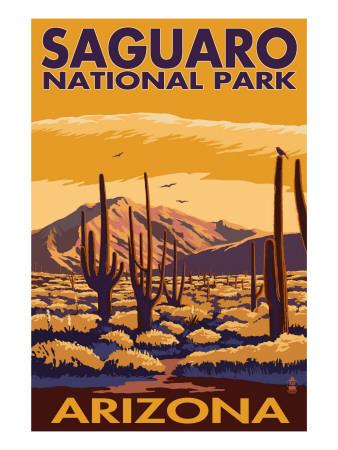 Saguaro National Park, Arizona Print by  Lantern Press