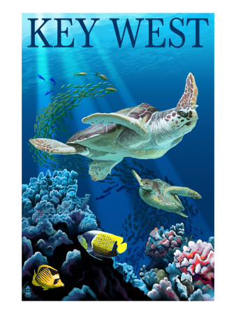 Key West, Florida - Sea Turtles Art Print