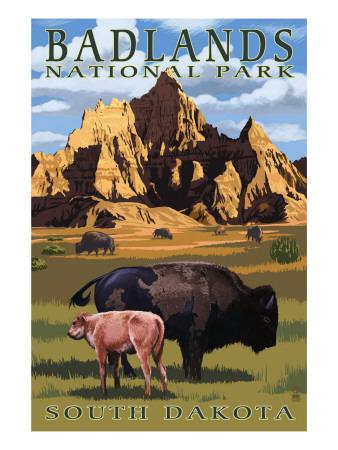 Badlands National Park, South Dakota - Bison Scene Prints by  Lantern Press