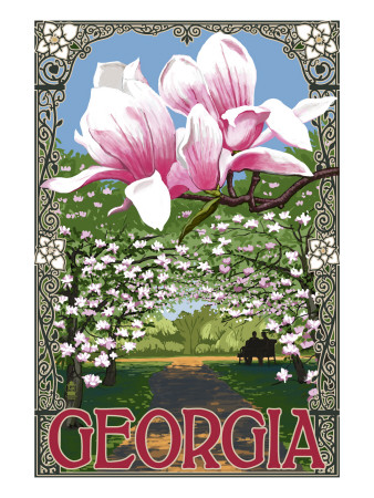 Georgia - Magnolias Prints by  Lantern Press