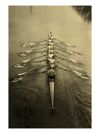Rowing Crew Posters
