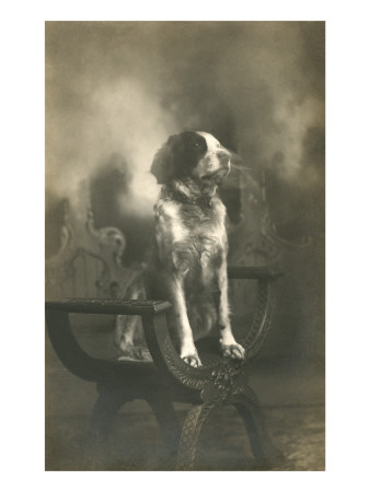 Dog Sitting on Carved Wooden Chair Print