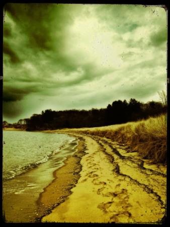 Addison Photographic Print by Cristina Carra Caso