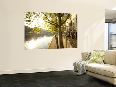 River Seine and Ile St. Louis, Paris, France Wall Mural by Jon Arnold