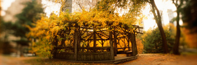 Gazebo in a Park, Central Park, Manhattan, New York City, New York State, USA Photographic Print