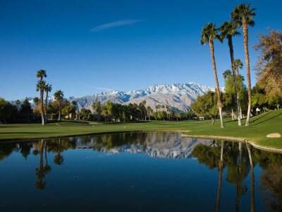 Pond in a Golf Course, Desert Princess Country Club, Palm Springs, Riverside County, California Fotografisk tryk
